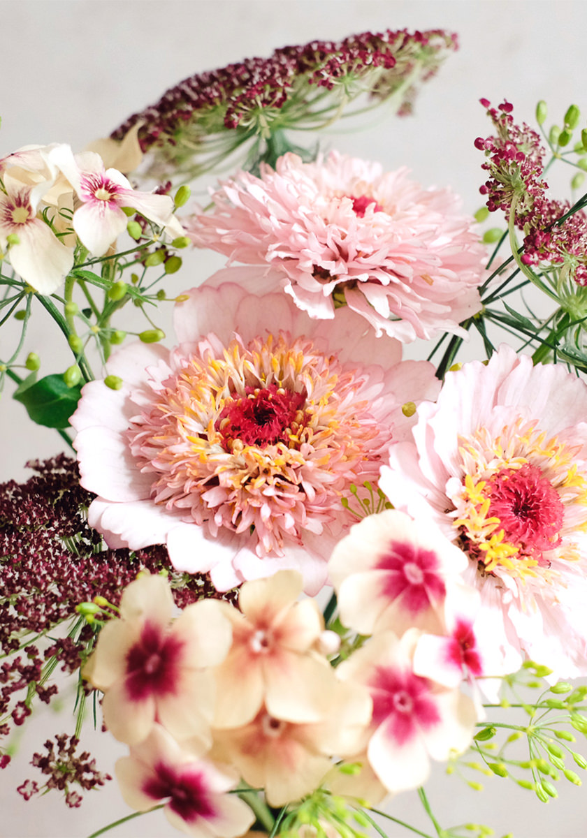 Wild Bouquets Pink Caramel Collection
